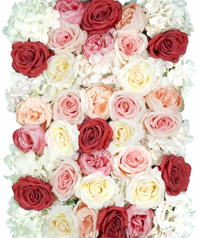 pinks reds creames and white in a flower wall