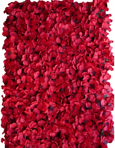 red hydrangeas flower wall for my wedding