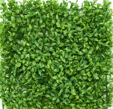boxwood flower wall for renting options
