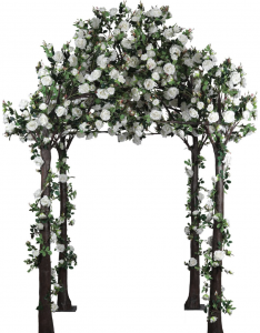 white colored roses wrapped over a large walk through gazebo for rent